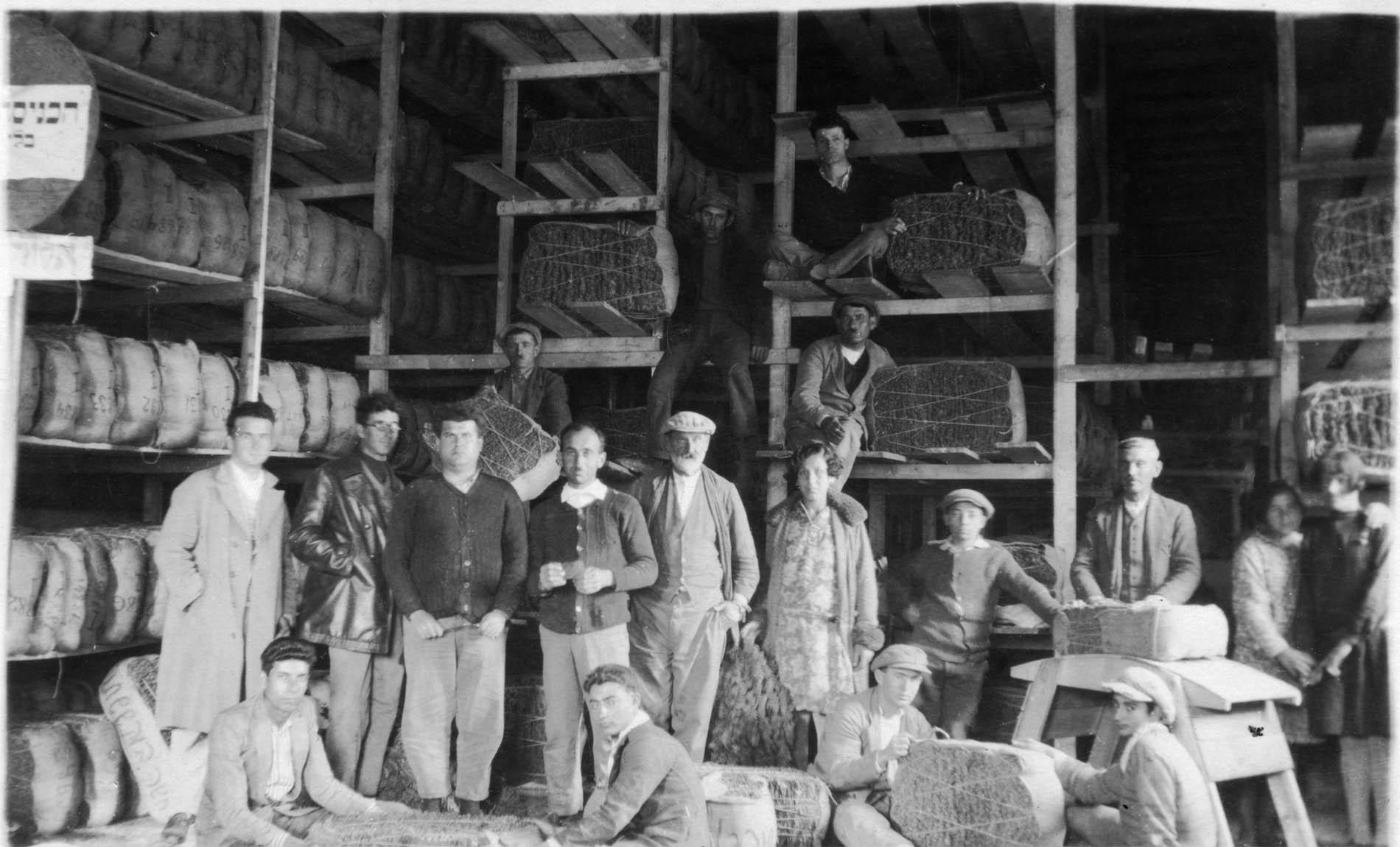 מפעל לייצור טבק
